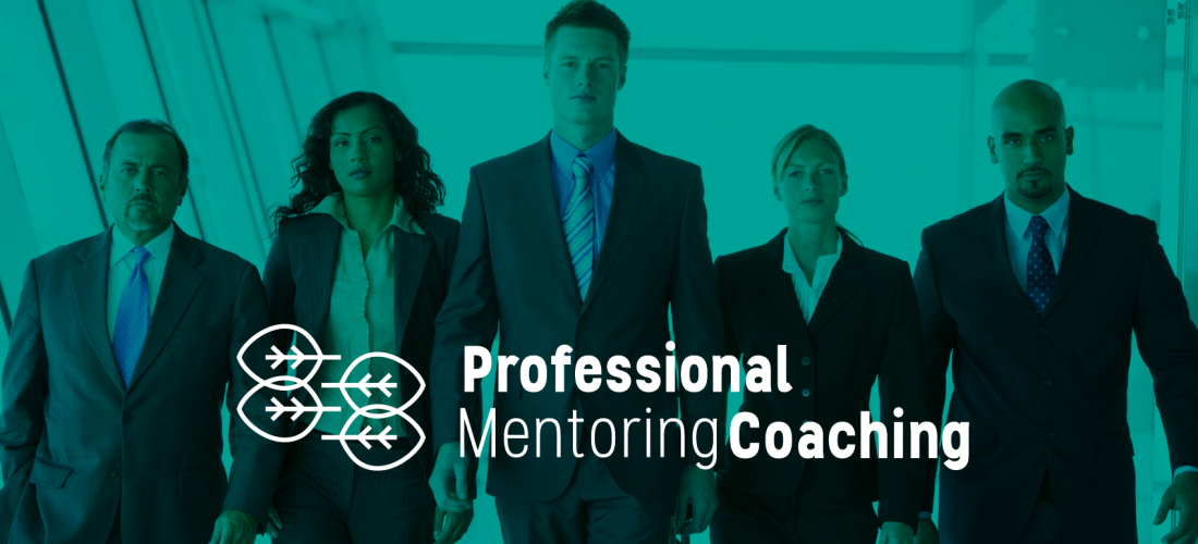 Professional Mentoring Coaching